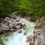 Waterfall Savica — Stock Photo #53219423