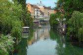 Ljubljana, slovenya — Stok fotoğraf