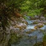 Waterfall Savica, Slovenia — Stock Photo #61882471