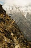 히말라야, 네팔에서에서 상위 경로 — Stok fotoğraf