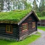 Traditional Norwegian House — Stock Photo #56891957