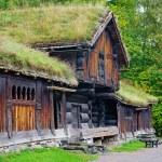 Traditional Norwegian House — Stock Photo #56892051