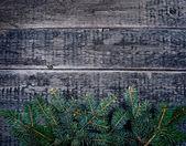 Christmas natural decorations — Foto de Stock