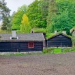 Norwegian House with grass roof. — Stock Photo #58358903