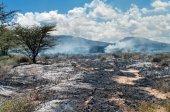 野火在非洲大草原 — 图库照片
