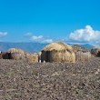 Traditional african huts — Stock Photo #58384105