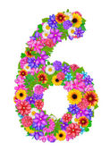 Educational floral 6 number — Stock Photo
