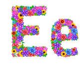 E Letter English alphabet — 图库照片