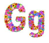 G Letter English alphabet — Foto de Stock