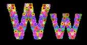Blomma W brev alfabetet — Stockfoto