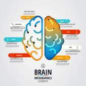 Creative brain infographics design — Stock Vector