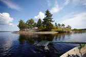 Island in the lake. — Stock Photo