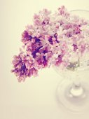 Branch with spring lilac flowers in a glass. — Стоковое фото