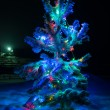Christmas tree covered snow. — Stockfoto #66384149