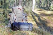 Hiking - backpack with camping equipment in woods — Stock Photo
