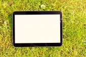 Blank digital tablet lying on green grass — Stock Photo