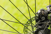 Close up of bicycle disc brakes on green grass background — Stock Photo