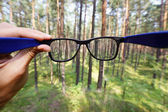 Optical eyeglasses in the hand over blurred forest background — Stock Photo