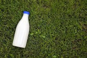 Top view of milk bottle on the grass with copy space — Stock Photo