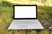 Laptop with blank screen on the moss in the forest — Stock Photo