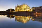 Palma de mallorca katedrali — Stok fotoğraf
