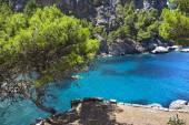Beautiful turquoise bay in Mallorca island, Spain — Stock Photo