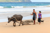 Farmers of Nacpan walking on the beach with a Carabao, the water buffalo — Stock Photo