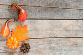 Autumn leaf, pine-cone and pumpkin — Stock Photo
