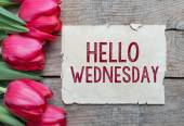 Tulips and paper with text Hello Wednesday — Stock Photo