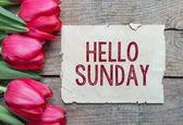 Carta con testo Ciao domenica e tulipani — Foto Stock
