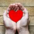 Red Heart in  hands — Stock Photo #70385505