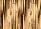 竹子背景图 — 图库矢量图片