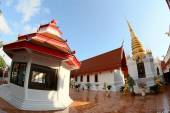 Art and line of wat tung sri wirai temple , baan cheetuan , khua — Stock Photo
