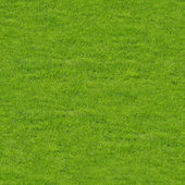 Seamless Texture of Green Grasses — Stock Photo