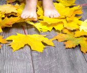 Baby foot on the wooden floor strewn with yellow maple leaves — Stock Photo