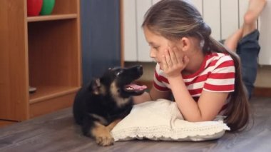 Girl gently stroking the puppy — Stock Video