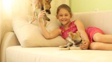 Little girl with puppies — Stock Video