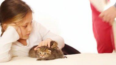Girl and cute little kittens — Stock Video