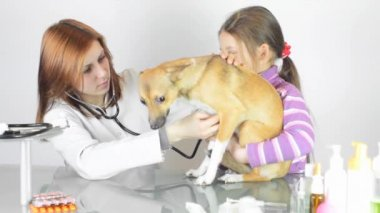 Female vet with little girl and dog — Stock Video
