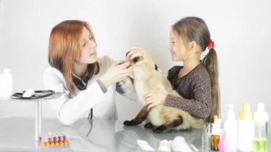 Female vet with little girl and cat — Stock Video