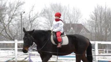 Girl on horse — Stock Video