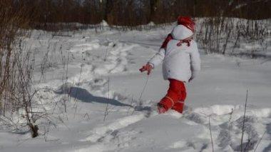 Little  girl in winter forest — Stock Video