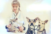 Woman veterinarian and puppy — Stock Photo