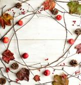 Autumn ivy leaf,apple and pine cone — Stock Photo