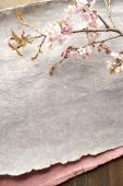 A spray of cherry blossoms on gray paper — Stock Photo