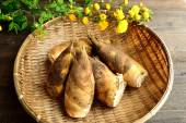 Bamboo shoots with Japanese kerria — Stock Photo