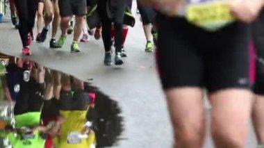 Marathon runners — Stock Video