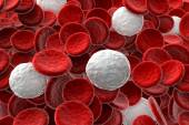 Red and white blood cells — Stock Photo