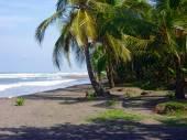Tortuguero Beach — Stock Photo