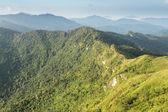 Phu Chi Fa landscape in Thailand — Stock Photo